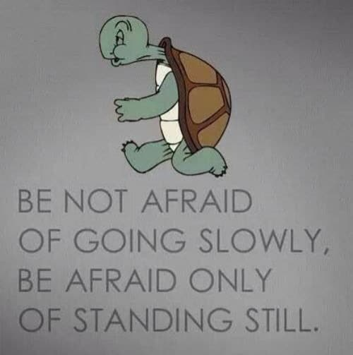 Keep moving forward! ...Even if it's a crawl.