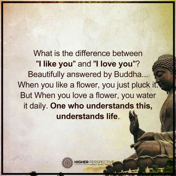 The difference between, 'I like you' and 'I love you.'